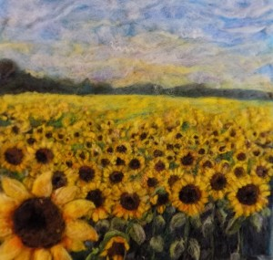 sunflower field on freshour rd part. sold