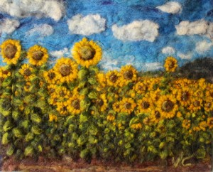 sunflower field, 2016 american equipment.